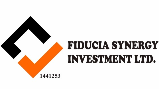 Fiducia Synergy Investment Limited